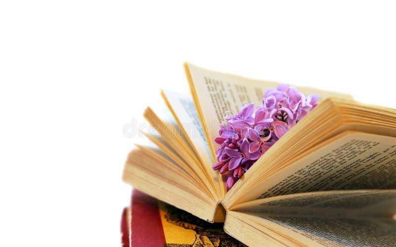 Berühmt Die Farbe Lila Buch Zeitgenössisch - Framing Malvorlagen ...