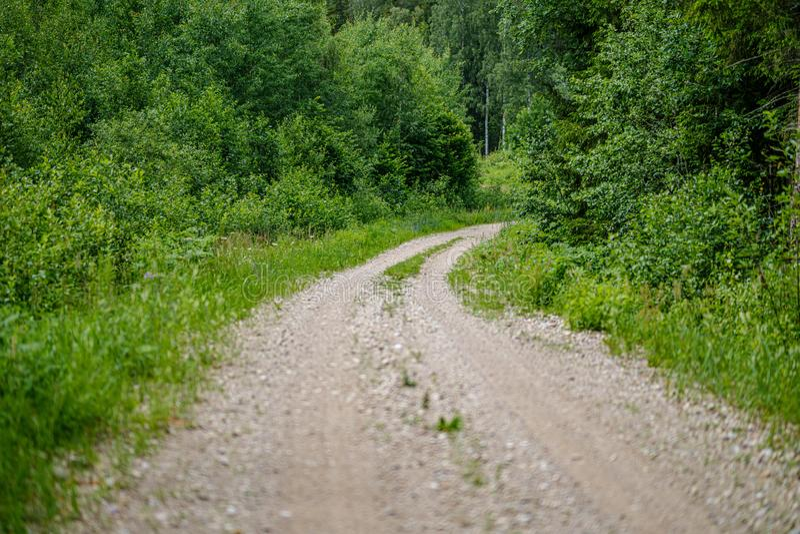 romantischer Kiesschotterweg in der Landschaft am grünen Abend des Sommers lizenzfreies stockbild