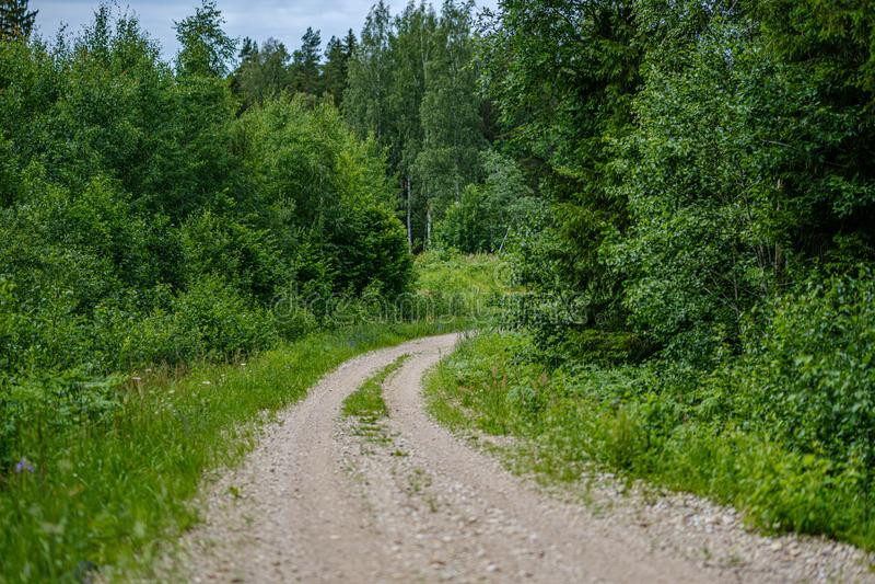 romantischer Kiesschotterweg in der Landschaft am grünen Abend des Sommers stockbild