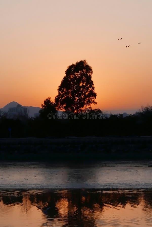 Romantischer orange Sonnenuntergang mit See- und Wasserwellen stockbild