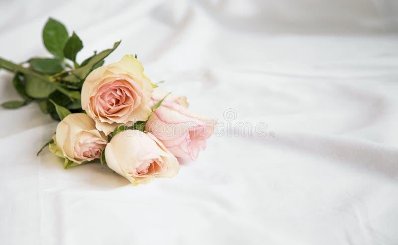 Romantischer rosa Rosenblumenstrauß auf den weißen Bettlaken, schöne weiche empfindliche Rosen auf dem Bett, stockbild