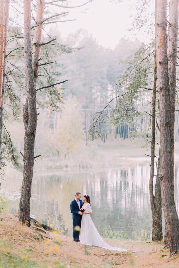 Romantischer Spaziergang von Jungvermähltenpaaren auf dem sandigen Ufer des Waldsees stockbild