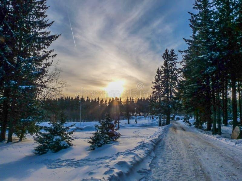 Romantischer Waldweg im Winter Sonnenuntergang Tschechischen Republik, Europa lizenzfreies stockfoto