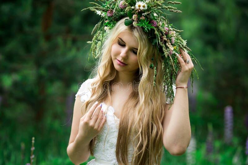 Romantisches Mädchen in einem Kranz von wilden Blumen auf einem Gebiet Sommerleben schönheit stockfotos