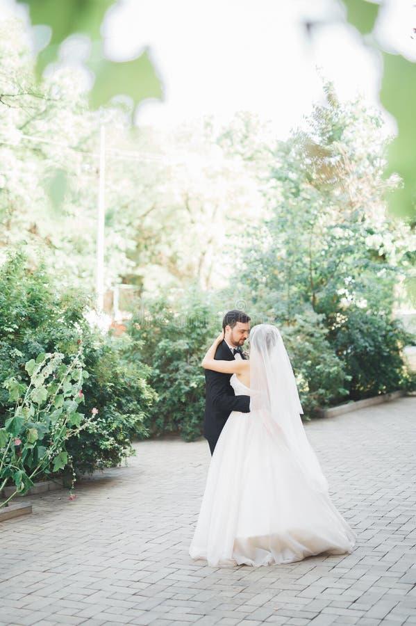 Romantisches Paartanzen und Küssen auf ihrer Hochzeit lizenzfreie stockfotos