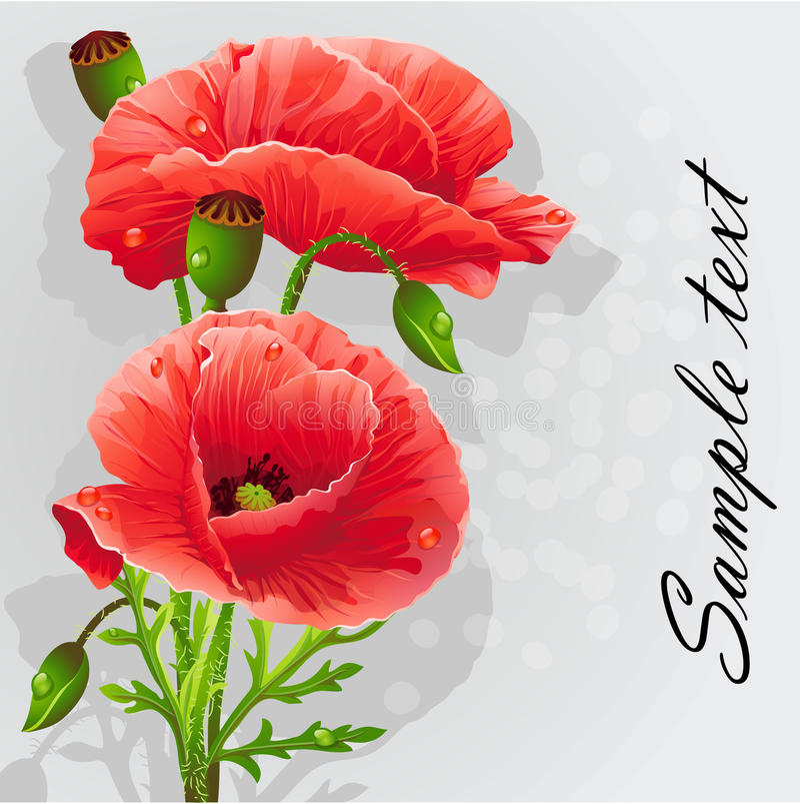 Romantisk bakgrund med poppies-EPS10 royaltyfri illustrationer