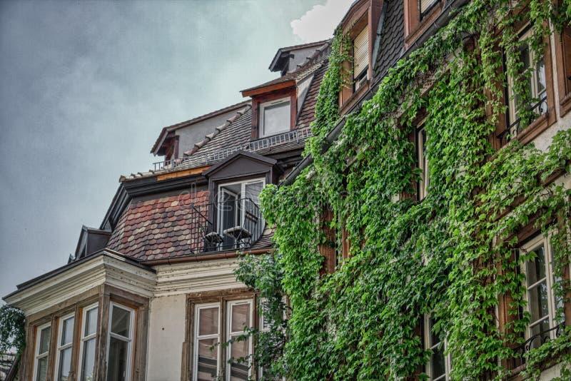 Romantisk balkong med murgrönan i Strassburg arkivbild