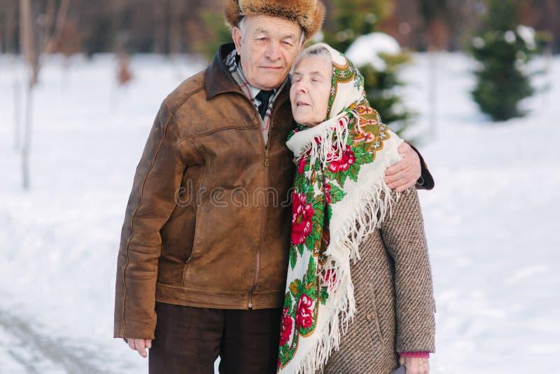 Romantisk hög parwalkink i parkerar i vintertid för alltid förälskelse arkivfoto
