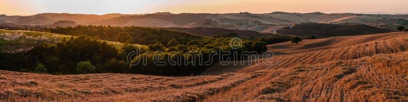 Romantisk panorama för stor skala i Tuscany Italien på solnedgången royaltyfri fotografi
