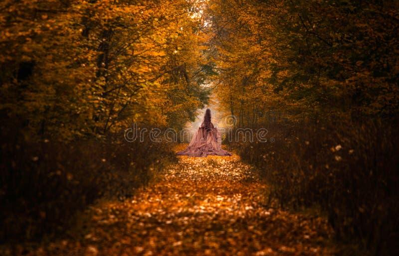 Romantisk räkning med kvinnan som går inom höstskog arkivfoton