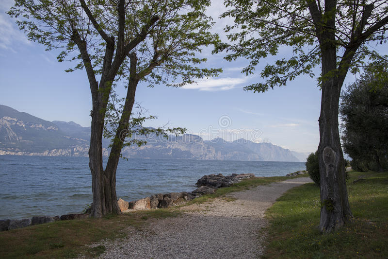 Romantisk sikt av Lago di Garda med träd arkivfoto