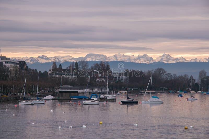 Romantisk solnedgång på Zurich sjön arkivbild