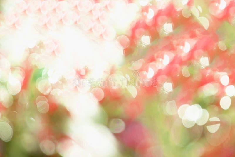 Romantiska bakgrunder för purpurfärgade abstrakta ljus arkivbilder