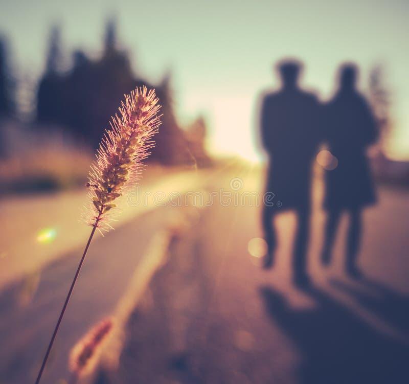 Romantiska höga par på solnedgången arkivfoton