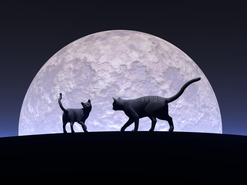 Romantiska katter vektor illustrationer