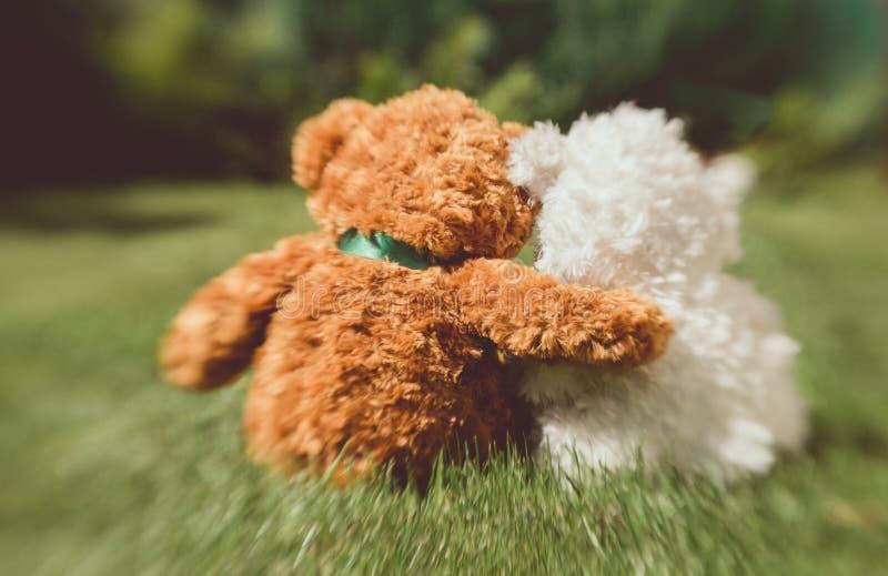 Romantiska nallebjörnar Ett par som är förälskat på ett datum i sommaren, arbeta i trädgården fotografering för bildbyråer