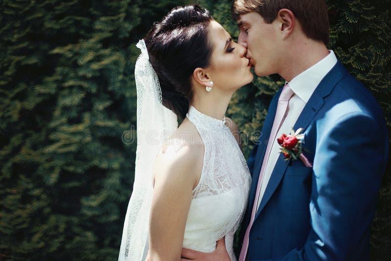 Romantiska nygift personpar som in kysser och kramar, parkerar closeupen royaltyfri fotografi