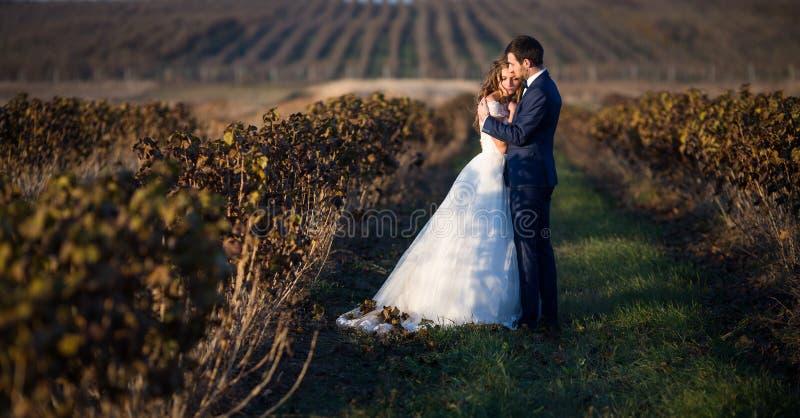 Romantiska par för saga av nygifta personer som kramar på solnedgången i vinranka royaltyfri fotografi