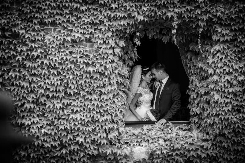 Romantiska par för saganygift person av valentynes som poserar i en n-nolla fotografering för bildbyråer