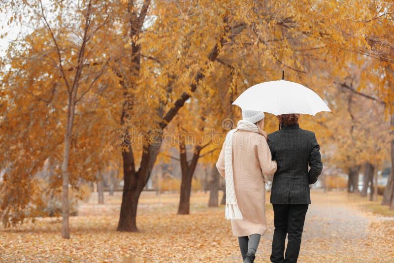 Romantiska par med paraplyet som in går, parkerar arkivfoton