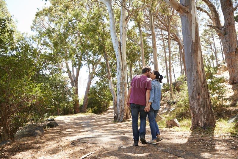 Romantiska par som fotvandrar längs Forest Path Together arkivfoton