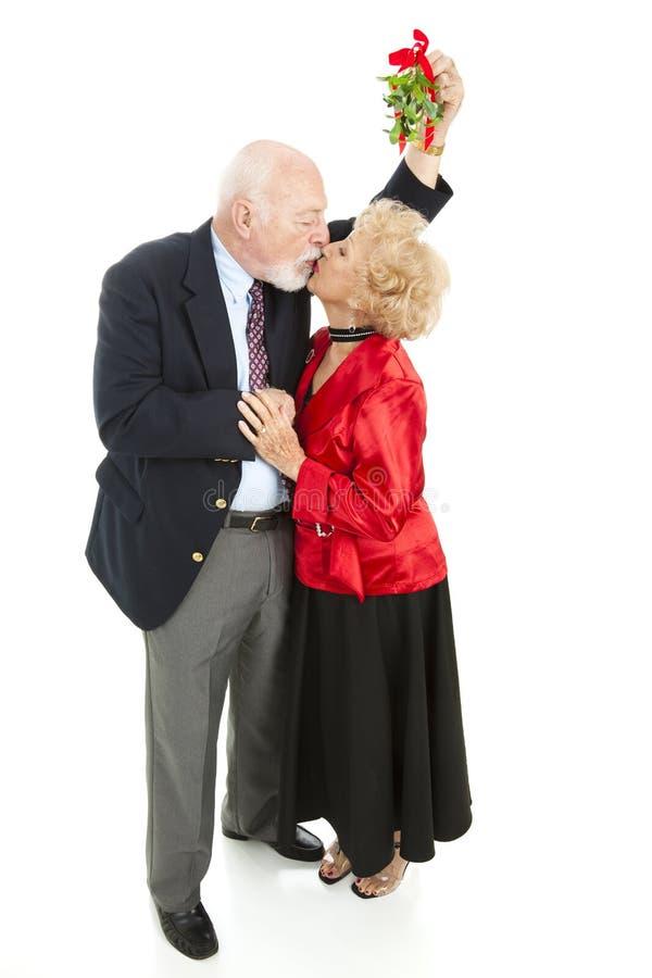 romantiska pensionärer för mistletoe under royaltyfri bild