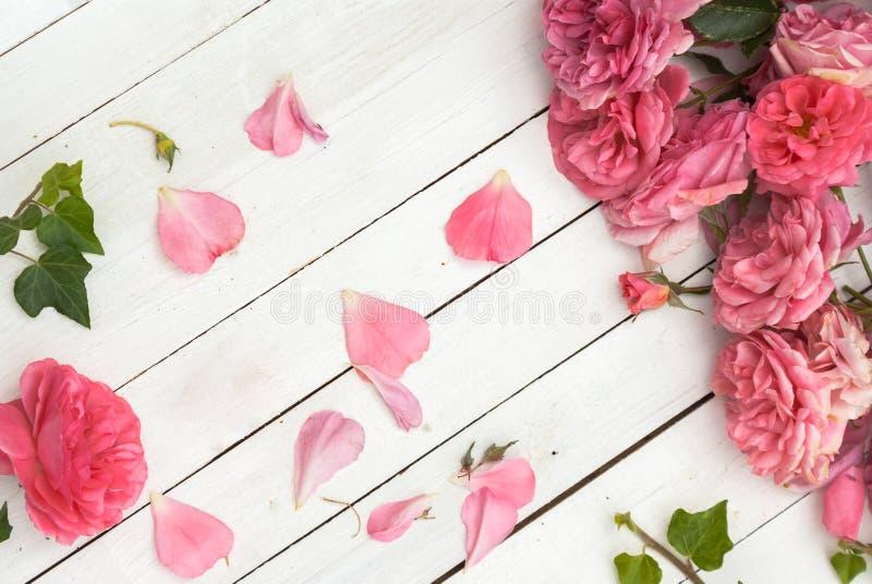 Romantiska rosa rosor på vit träbakgrund royaltyfri fotografi