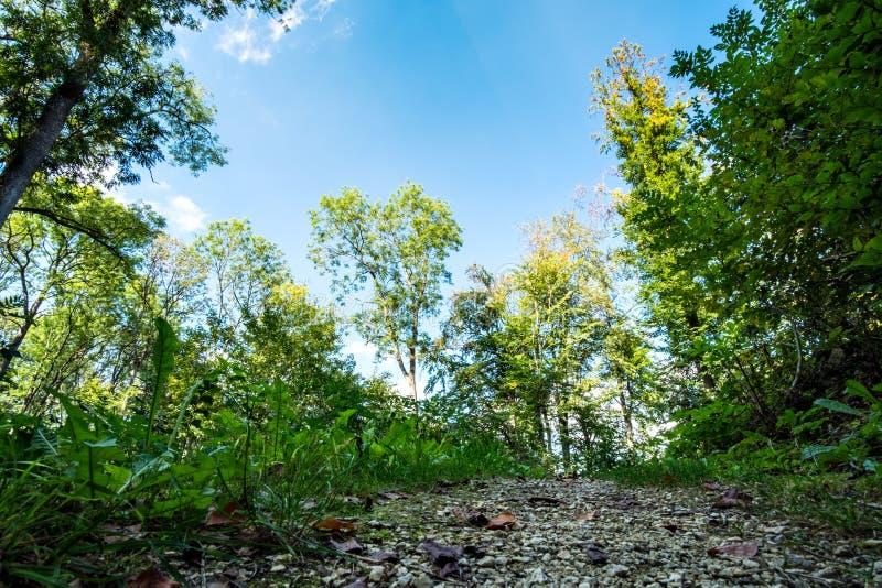 Romantiskt landskap Koenigsbronn fotografering för bildbyråer