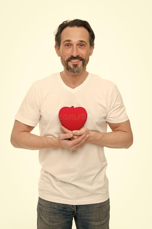 Romantiskt och affectious Stilig mogen man med valentindaghj?rta Valentinman som rymmer r?d leksakhj?rta i h?nder fotografering för bildbyråer