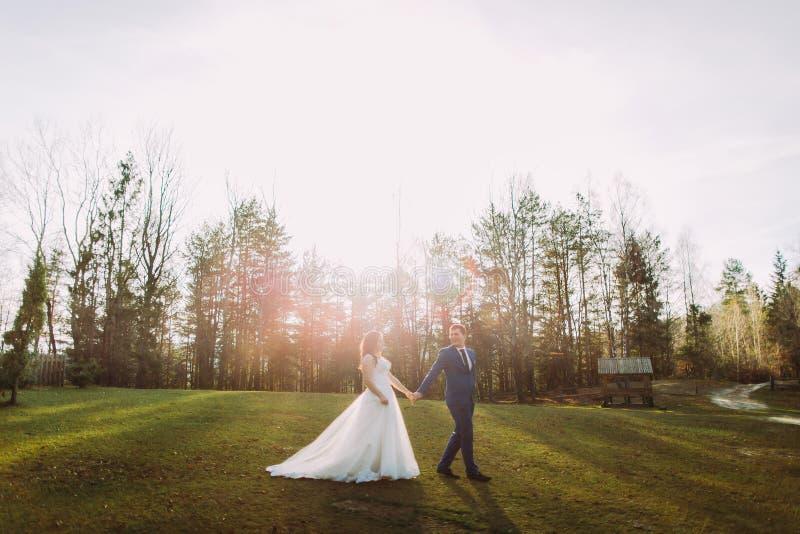 Romantyczna ślub para outdoors Państwa młodzi odprowadzenie na zielonej trawie Jaskrawy słońce przy tłem zdjęcie royalty free