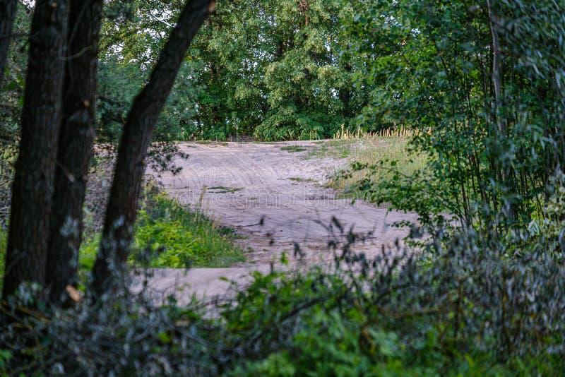 romantyczna żwir droga gruntowa w wsi w lato zieleni wieczór zdjęcie royalty free