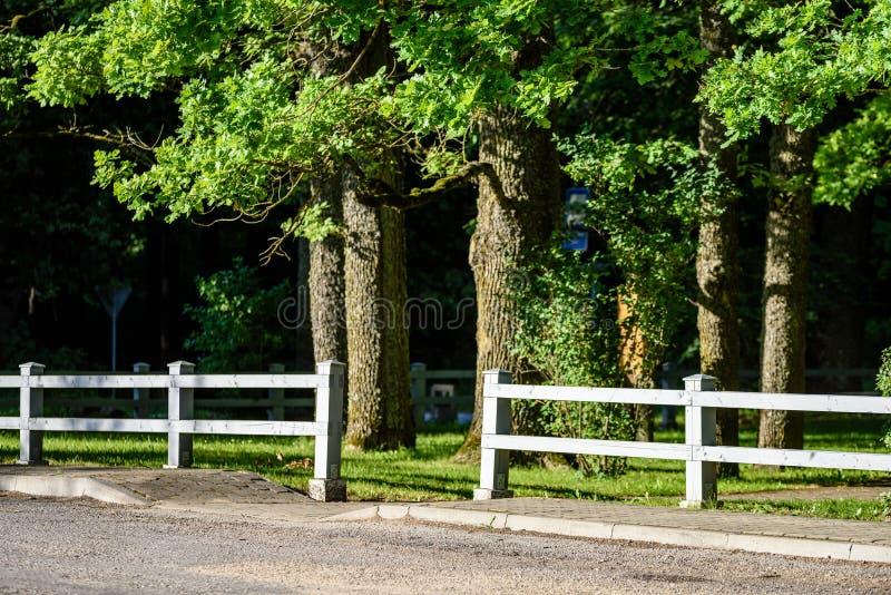 romantyczna żwir droga w kraju pod niebieskim niebem zdjęcia stock