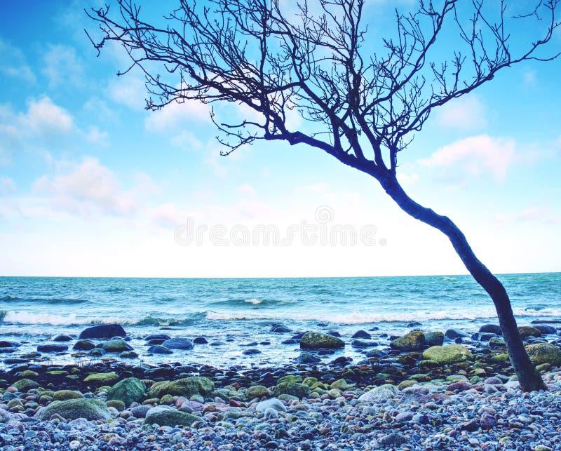 Romantyczna dusza zmierzch Długi ujawnienie morze i skały fotografia royalty free
