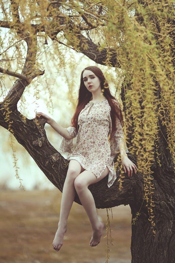 Romantyczna dziewczyna z czerwony długie włosy w wiatrze na wierzbowym drzewie obraz royalty free