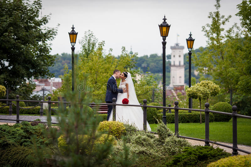 Romantyczna nowożeńcy para, fornala całowania panna młoda w europejczyka parku w obraz stock