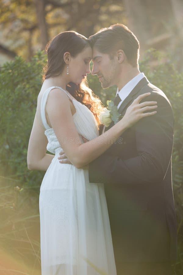 Romantyczna nowożeńcy para z oczami zamykał pozycję przy parkiem obrazy stock