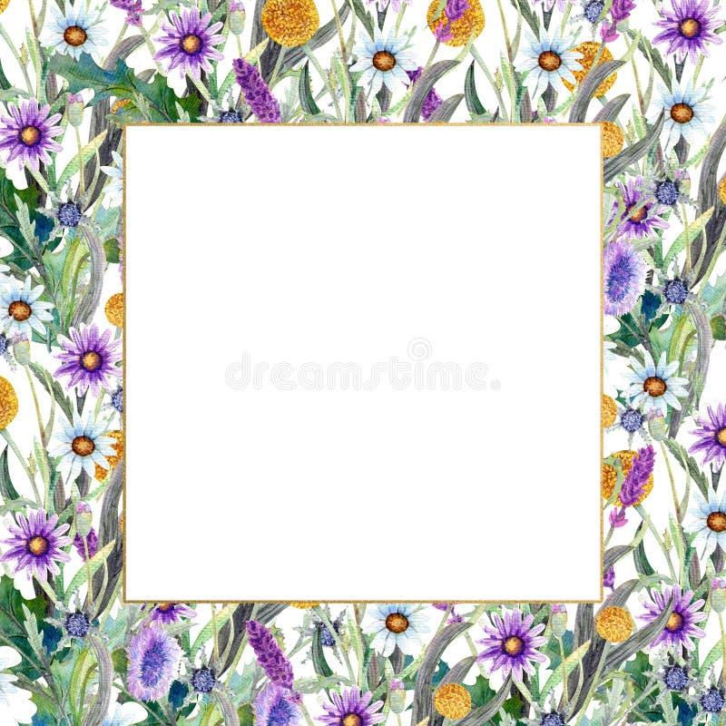 Romantyczna rama Wildflowers w akwareli ?lubny poj?cie z kwiatami Kwiecisty plakat, zaproszenie akwarela royalty ilustracja