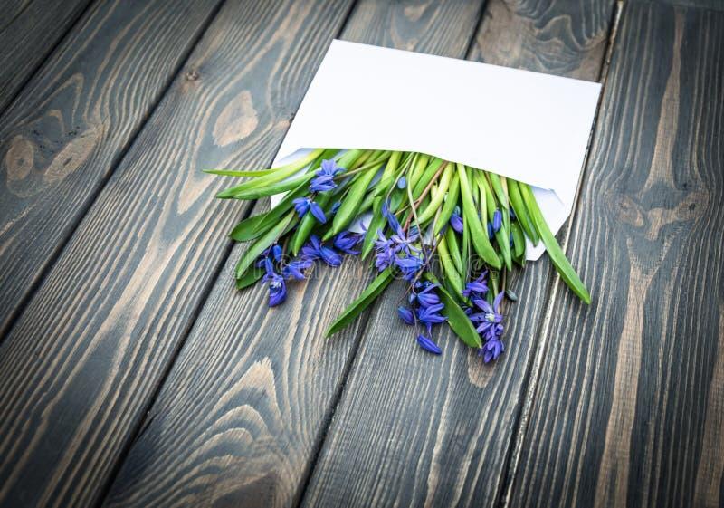 Romantyczna wiosny karta Opancerzań wildflowers i koperta fotografia royalty free