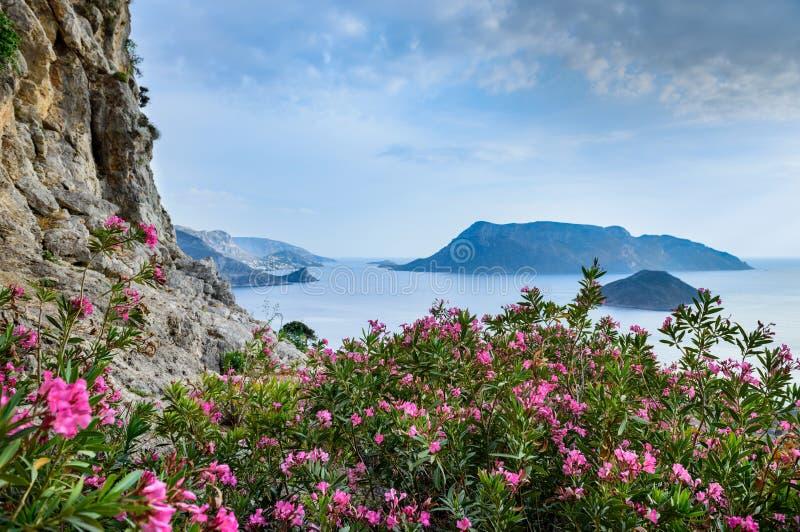 Romantyczni podróży miejsca przeznaczenia Wiosna kwitnie na Kalymnos wyspie, zdjęcia stock