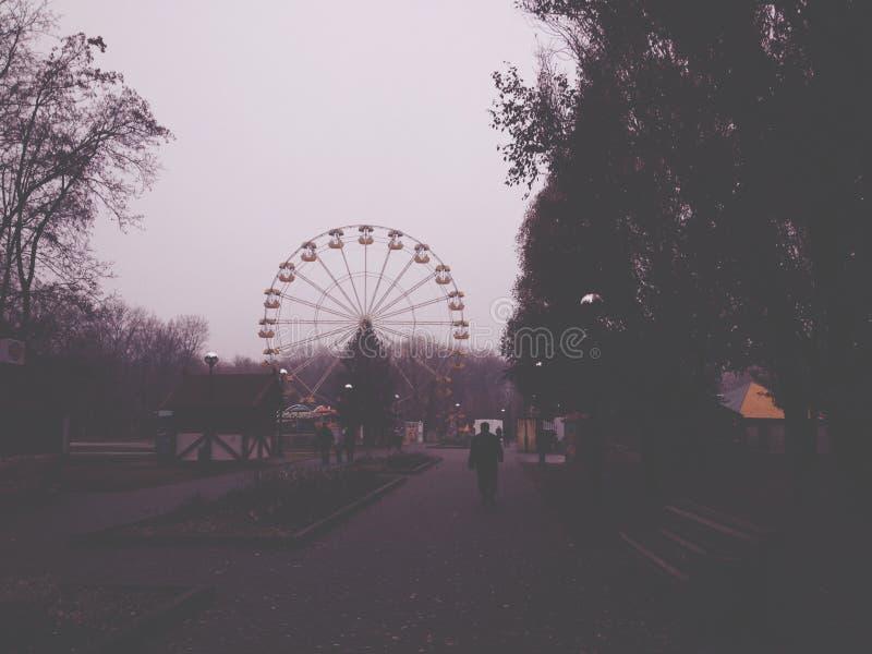 Romantyczny Ferris koło zdjęcie stock