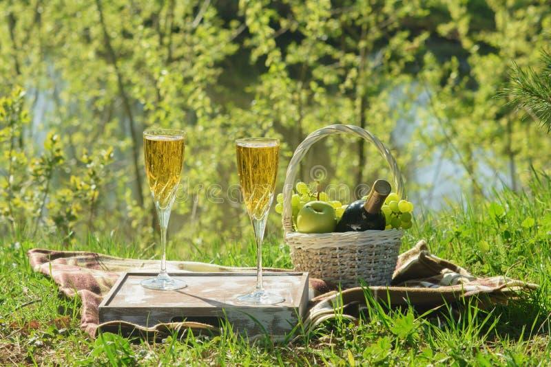 Romantyczny lunch na koc w Lasowym Bocznym widoku fotografia royalty free