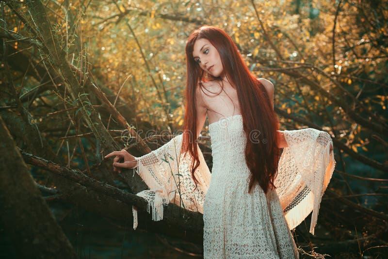 Romantyczny portret czerwona z włosami kobieta zdjęcia royalty free