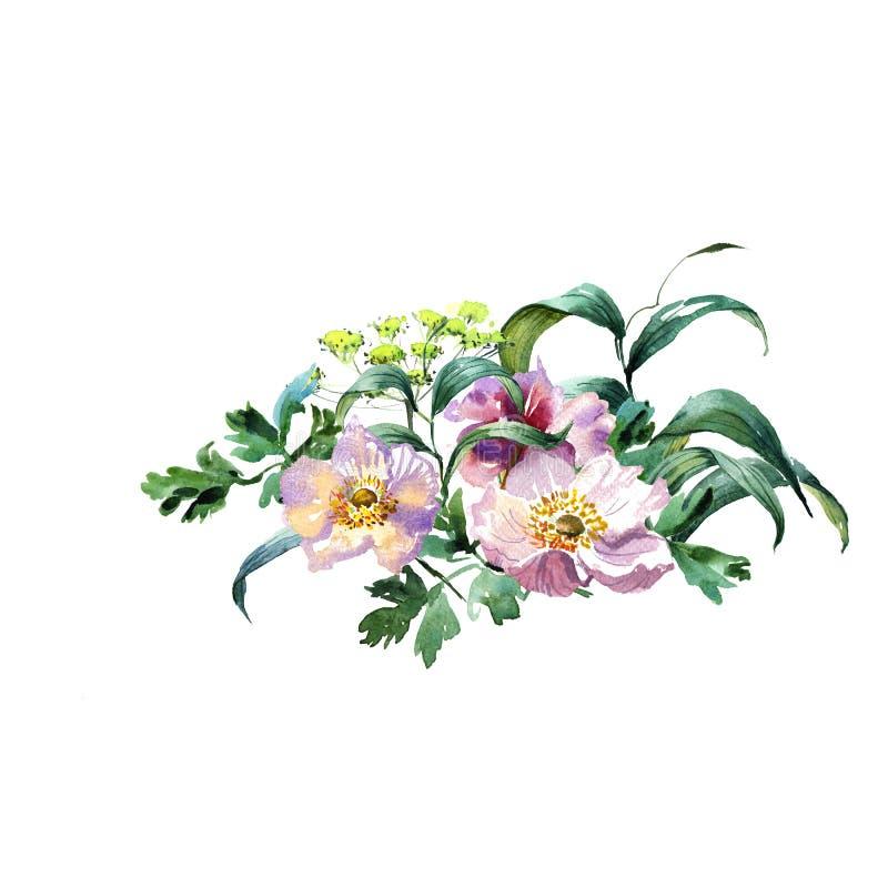 Romantycznych akwarela Szmaragdowych kwiatów gałęziasty bukiet fotografia royalty free