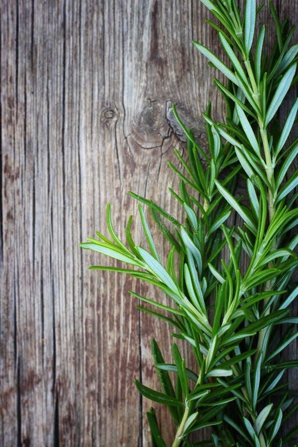 Romarin frais sur la table en bois photographie stock libre de droits