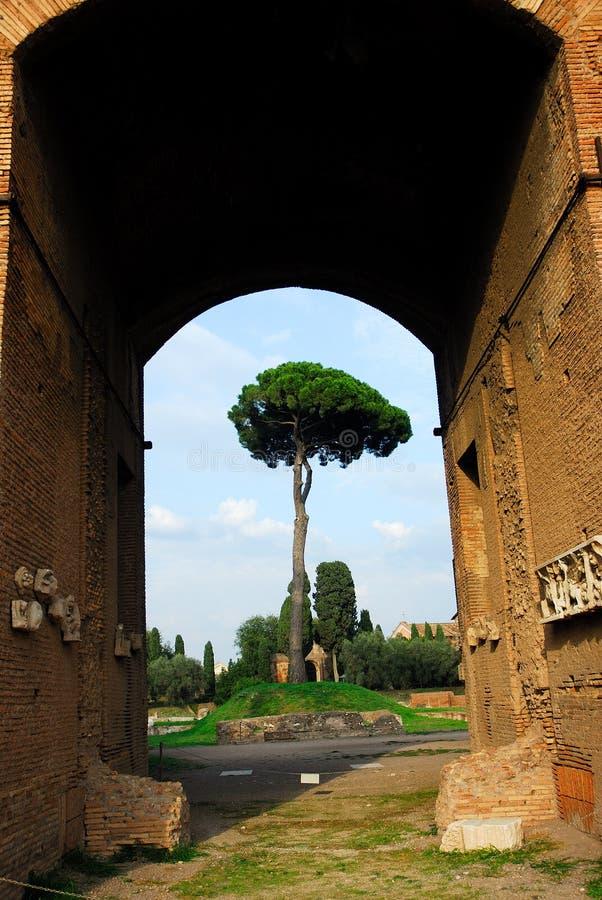Rome antique images libres de droits