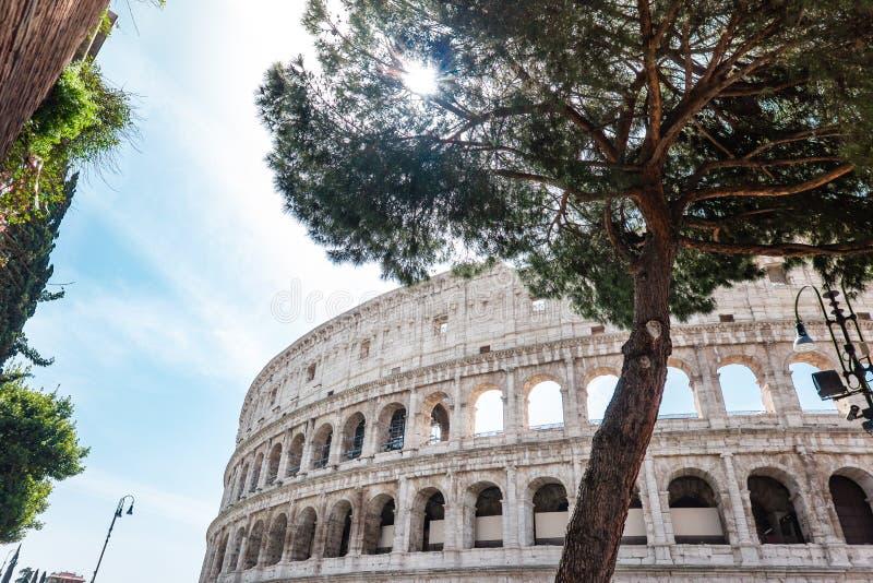ROME Italien: Utm?rkt Roman Colosseum Coliseum, Colosseo ocks? som ?r bekant som Flavian Amphitheatre Ber?md v?rldsgr?nsm?rke Sce arkivbild