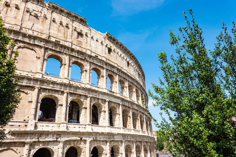 ROME Italien: Utm?rkt Roman Colosseum Coliseum, Colosseo ocks? som ?r bekant som Flavian Amphitheatre, med gr?na tr?d Ber?mt v?rl royaltyfri fotografi