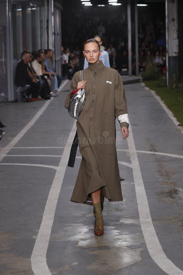 Romee Strijd geht die Rollbahn während der elfenbeinfarbenen Show als Teil Paris-Mode-Woche Womenswear-Frühlinges/Sommers 2019 stockfoto