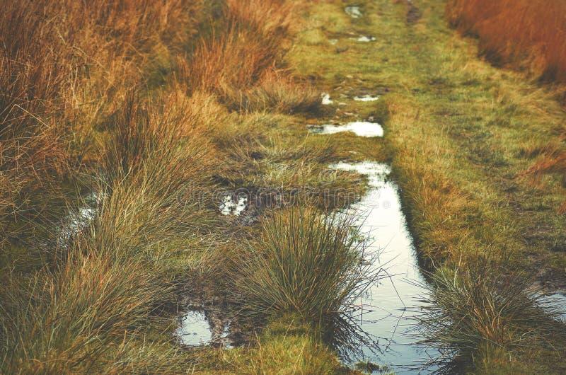 Romersk för Dovestone för vägmaximumområde Greenfield behållare, England, UK fotografering för bildbyråer