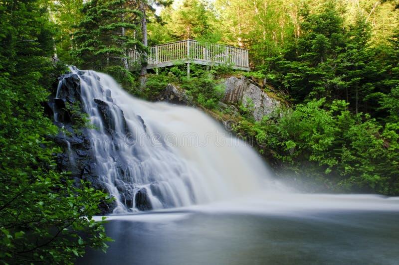 Romig Water royalty-vrije stock foto